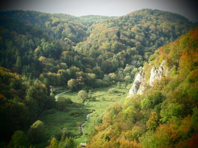 Dolina Prądnika, Ojcowski Park Narodowy