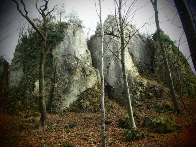 Rezerwat leśny Dolina Szklarki