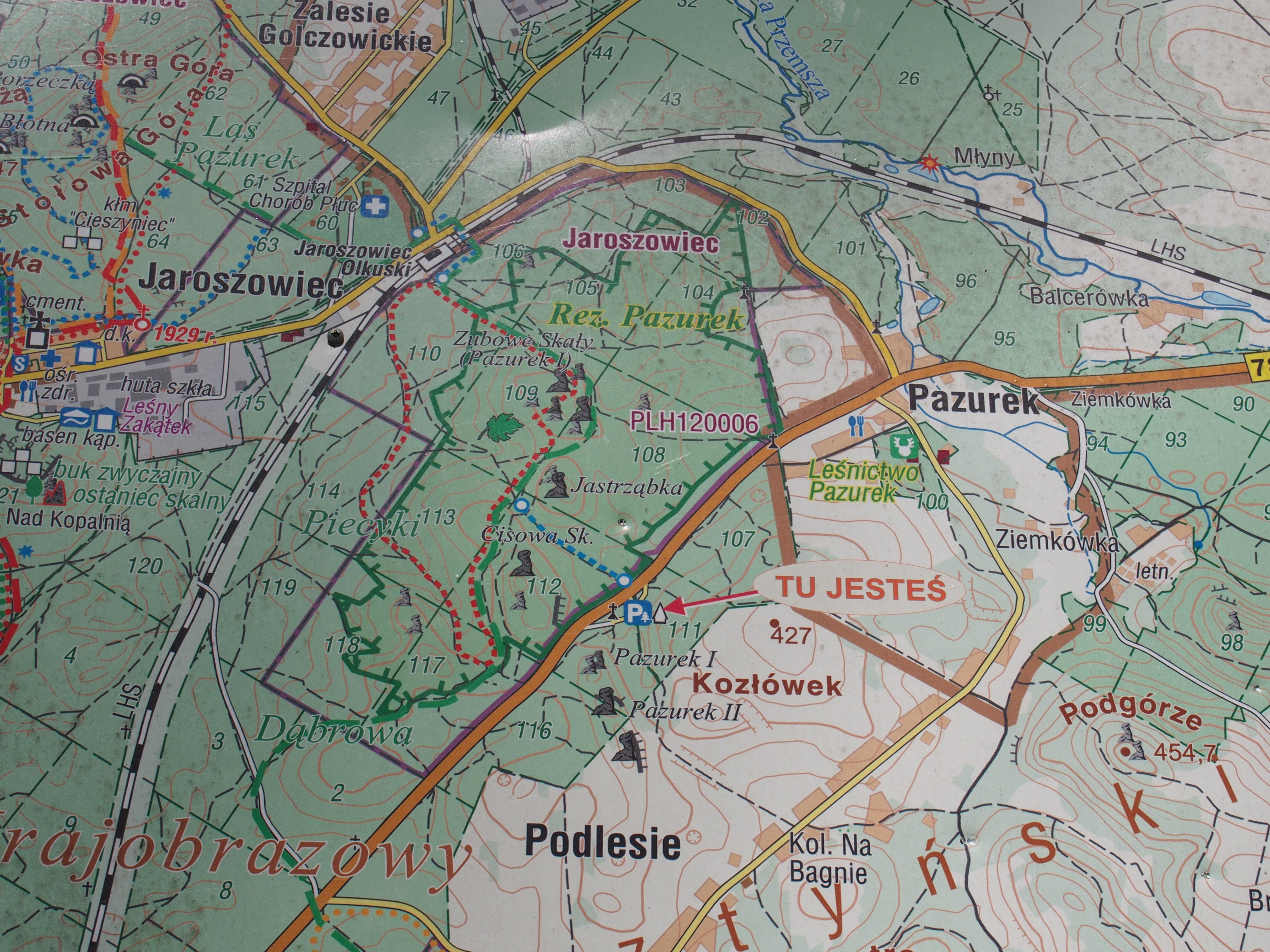 Mapa z przebiegiem szlaku w rezerwacie Pazurek