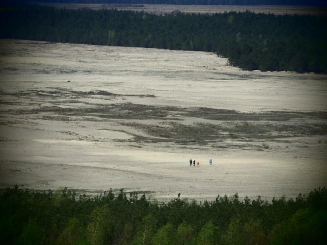 Turyści idący po Pustyni Błędowskiej
