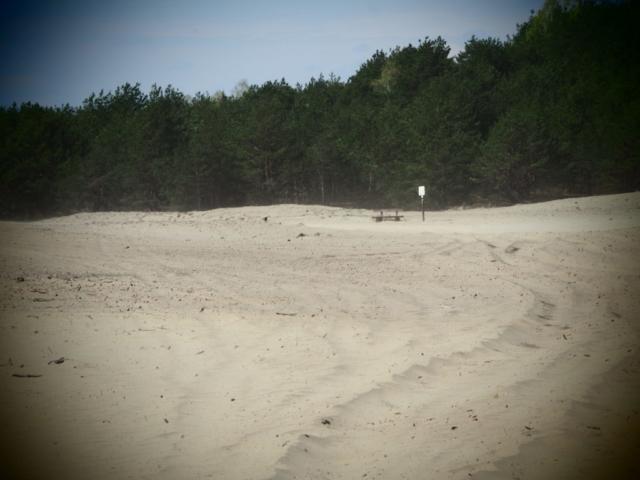 Szlak pieszy na Pustyni Błędowskiej
