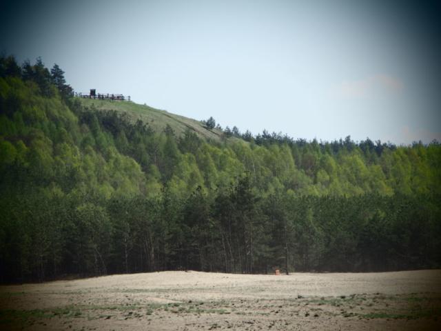 Widok z Pustyni Błędowskiej na punkt widokowy Czubatka