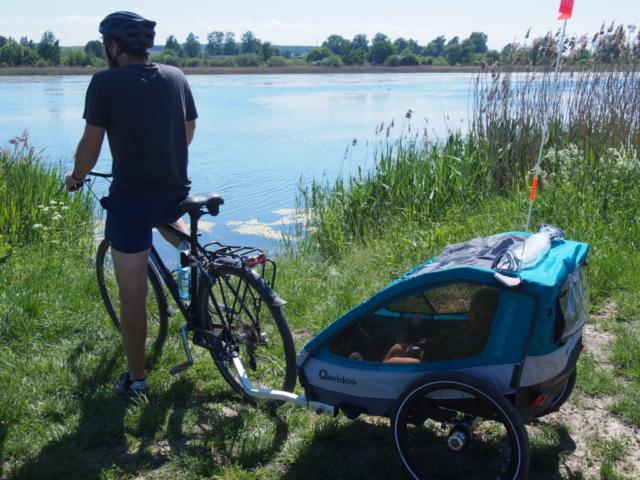 Rower z przyczepką przy stawach Spytkowickich