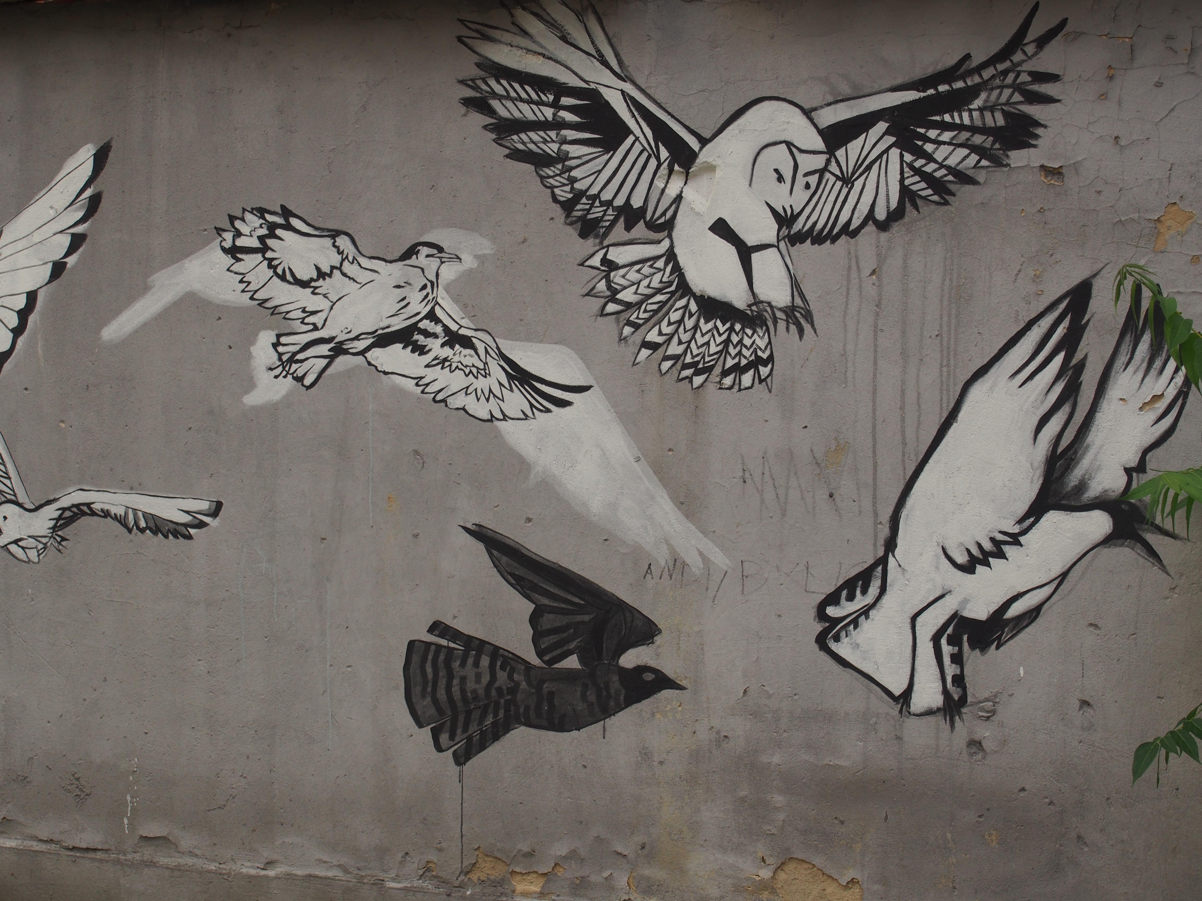 Mural z ptakami w Tarnowie