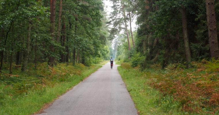 Puszcza Niepołomicka na rowerze