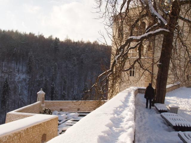 Widok na dziedziniec zamku i ogrody parterowe
