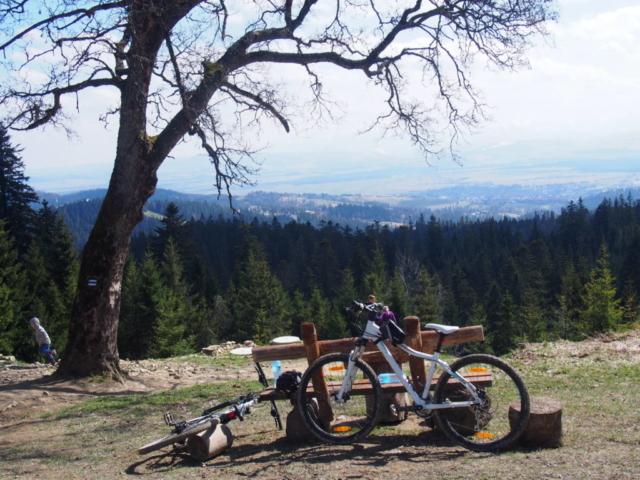 Widok na las, rowery, ławkę, Nowy Targ spod schroniska