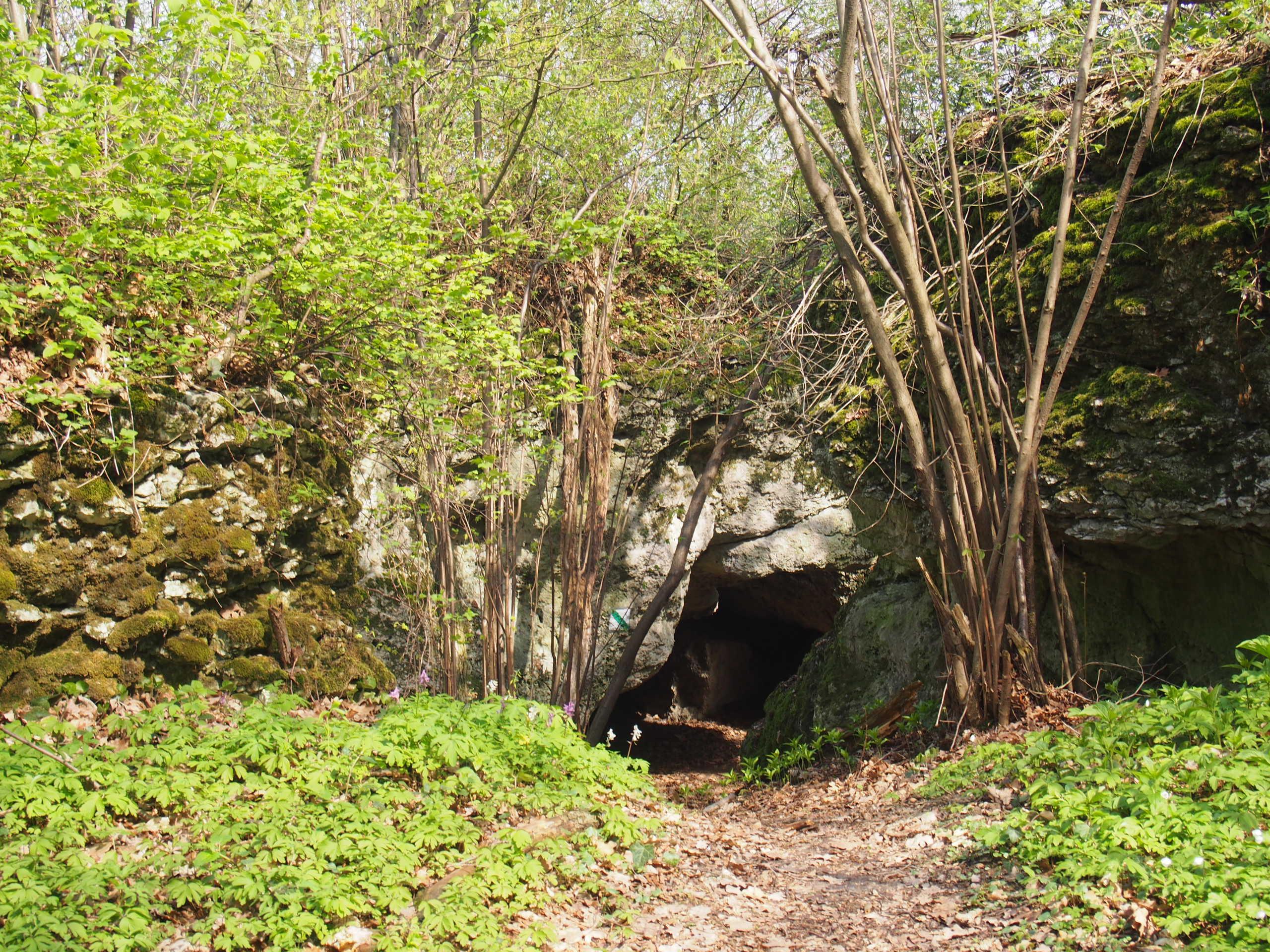 Wąskie przejście między skałami