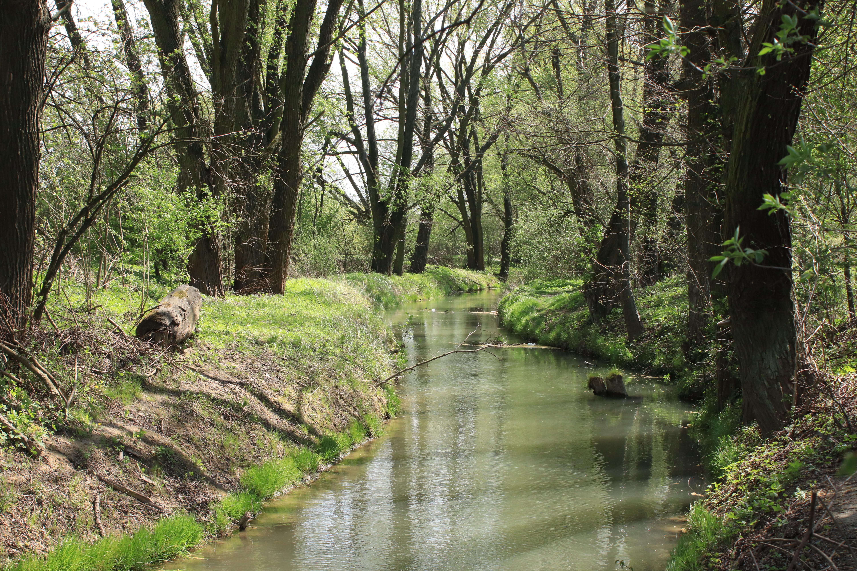 Zbiornik wodny Zesławice