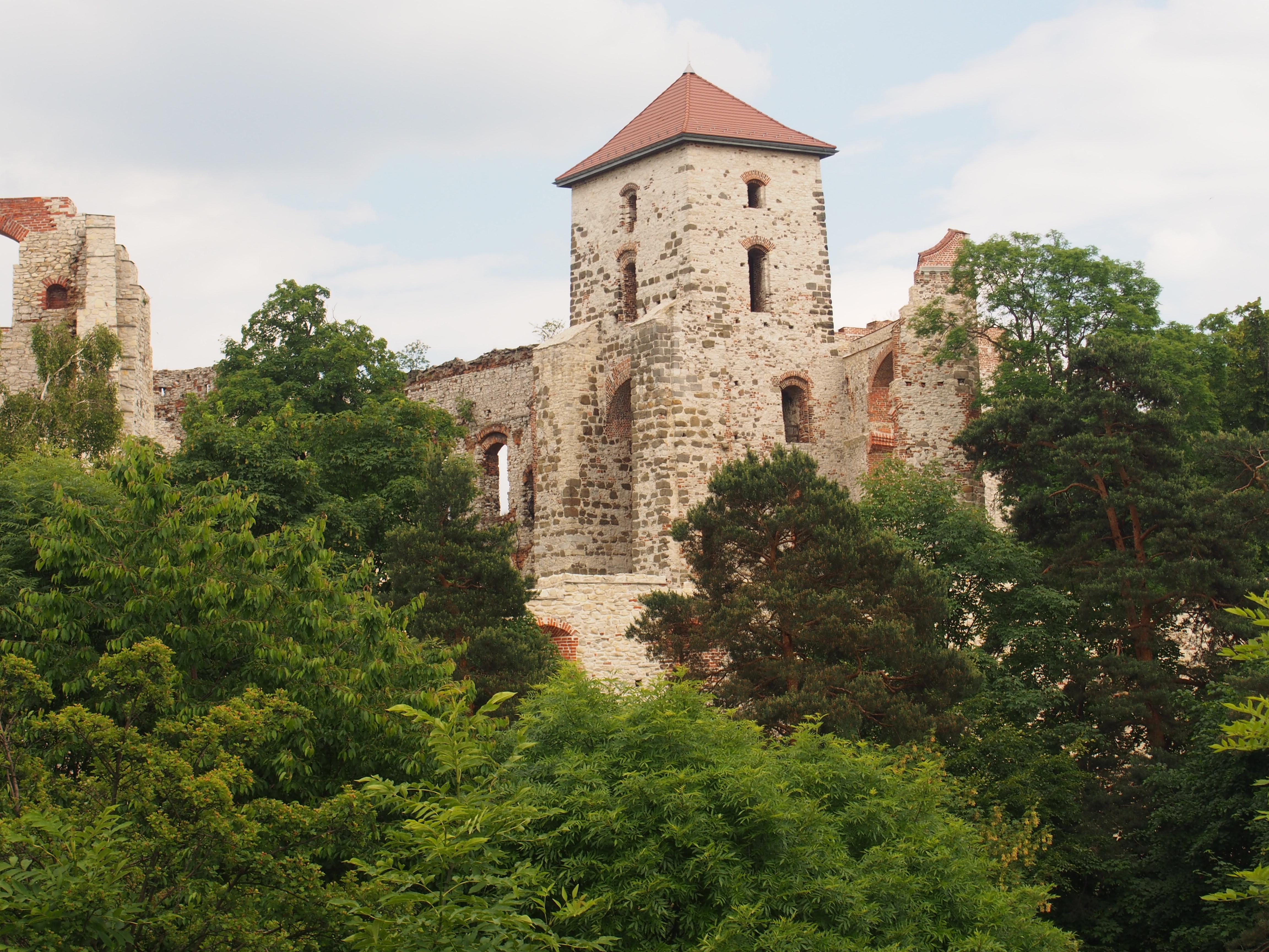 Zamek Tenczyn w trakcie remontu