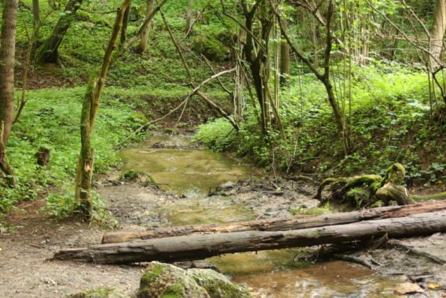Potok Kluczwoda