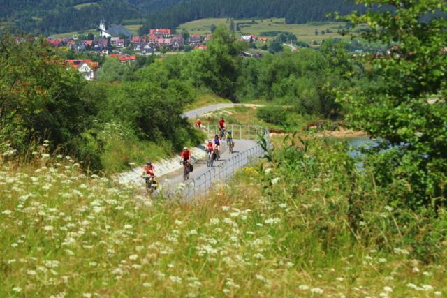 Droga rowerowa przez łąki